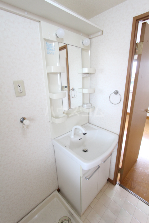 龍やまだ 101号室の洗面所