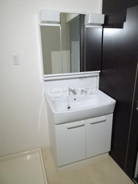 アクアスフィア 202号室の洗面所