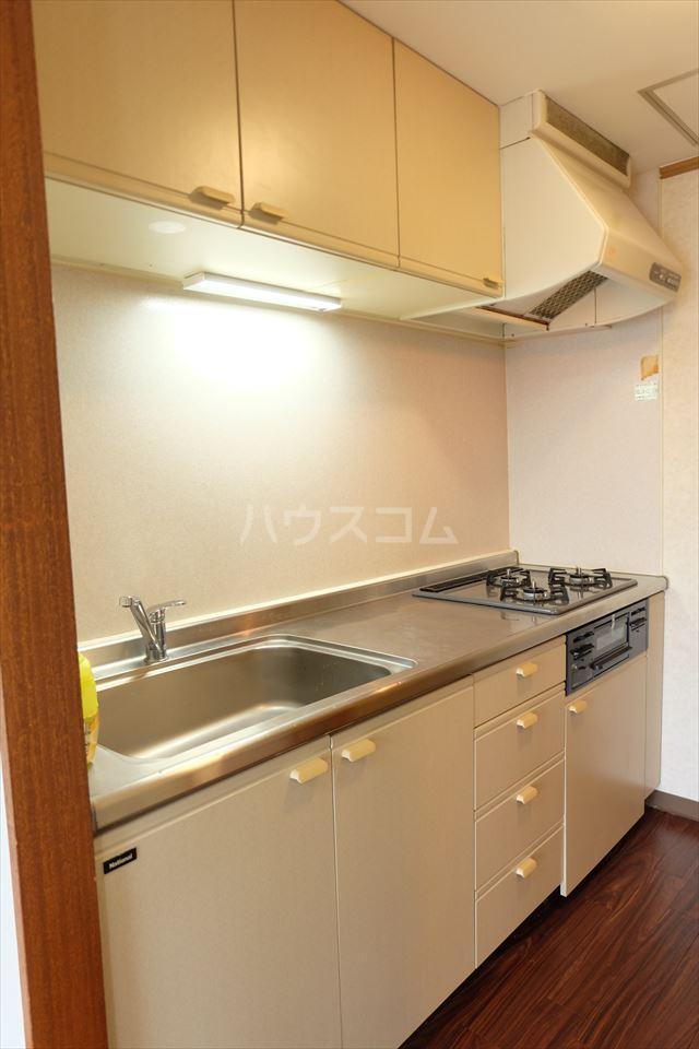 陽南イタリハイツ 101号室のキッチン