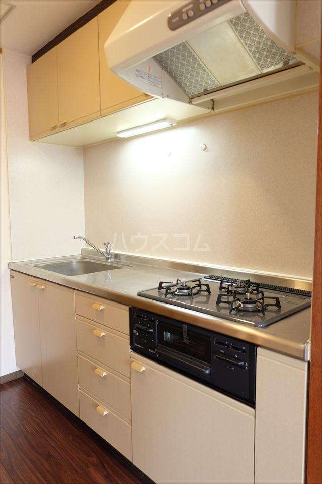 陽南イタリハイツ 202号室のキッチン