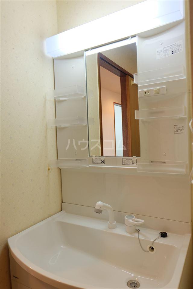陽南イタリハイツ 202号室の洗面所