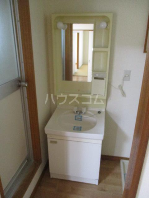ブルーウィングみなみ B 302号室の洗面所