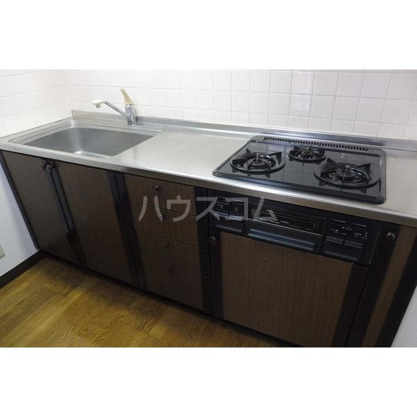 ドミール平松 207号室のキッチン