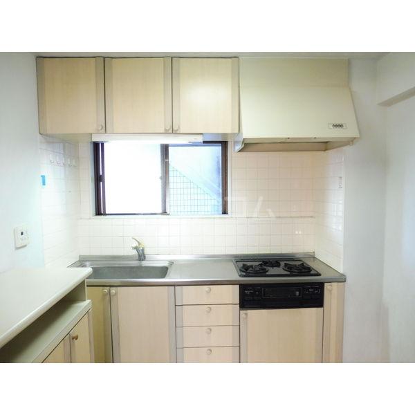 ドミール平松 507号室のキッチン
