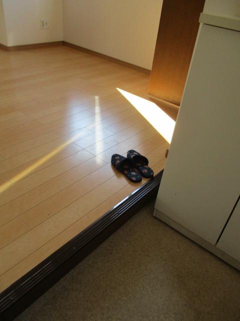 第2鬼怒ハイツ 201号室の玄関