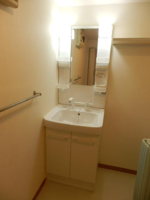 モア・グランドリーMY B 203号室の洗面所