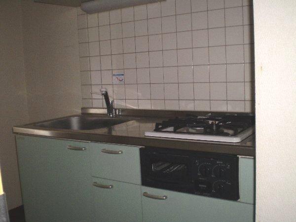 プレゾン・マロニエ 405号室のキッチン