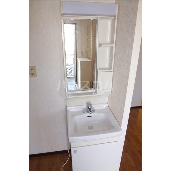 サンシティマガミ 202号室の洗面所