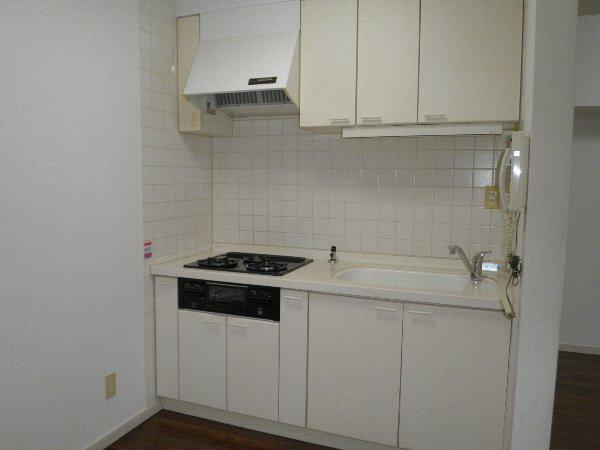 パークヒルズ宿郷 501号室のキッチン
