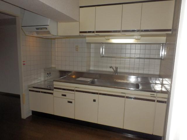 ルミエール薬師寺 203号室のキッチン
