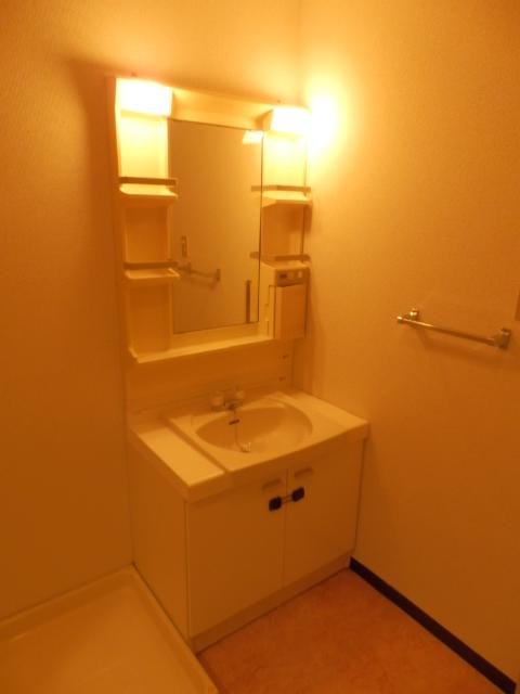 ルミエール薬師寺 203号室の洗面所
