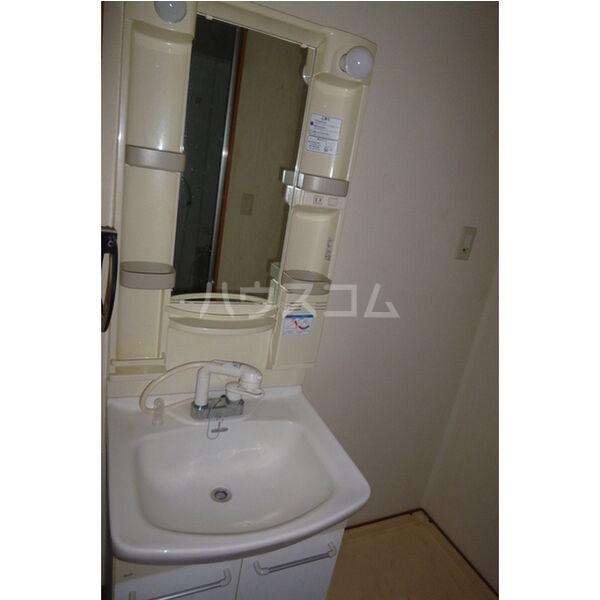 タウニィ・コスモスⅤ 101号室の洗面所