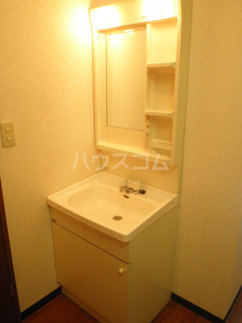 フォレストヒルズ 206号室の洗面所