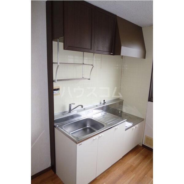 うすいリバーサイドハイツ 101号室のキッチン