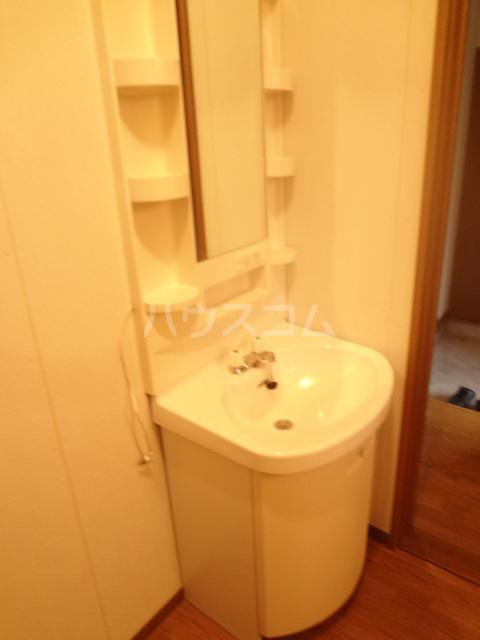 ベルジュ 203号室の洗面所