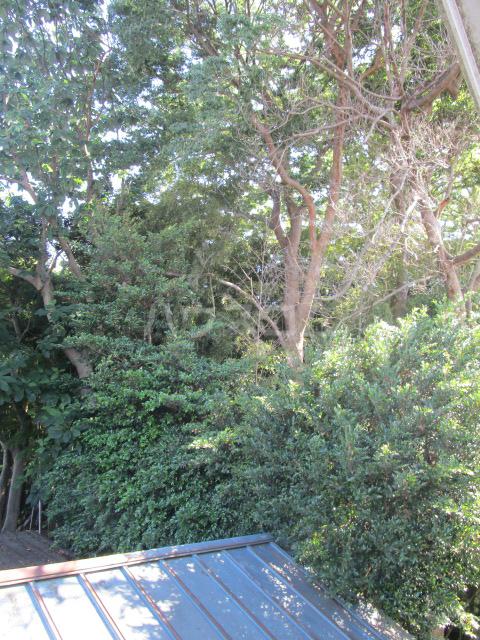 ル・ドルトア大塚 205号室の景色