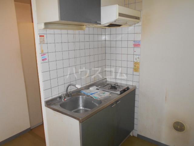 ジュネス西湘 305号室のキッチン