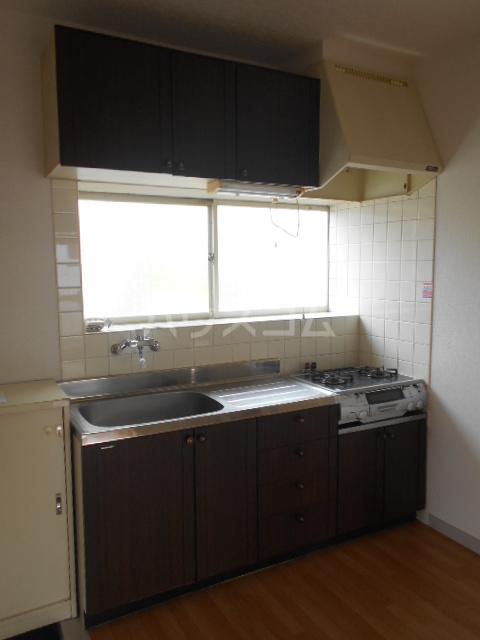 グレースコーポ 202号室のキッチン