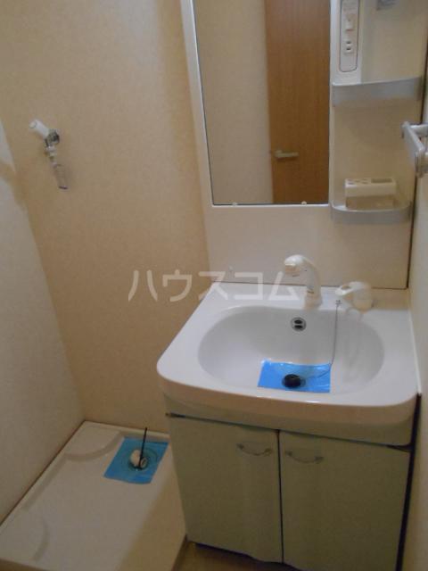アルペンローゼ 101号室の洗面所