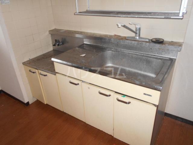 ランドフォレスト春日部Ⅱ 106号室のキッチン