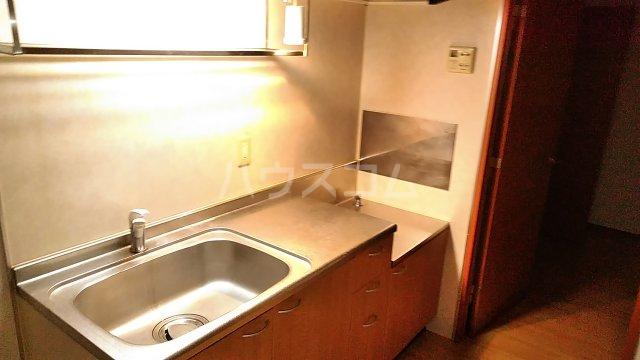 グレイス青葉 301号室のキッチン