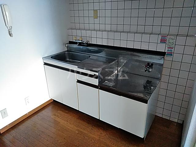 アイビー鷺沼 303号室のキッチン