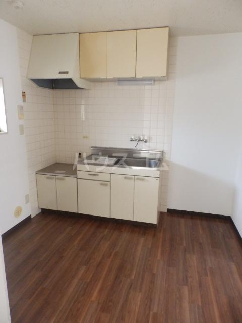 シャトーフローラルN-1 205号室のキッチン