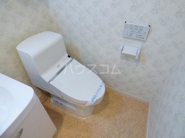 ダイワティアラ津田沼Ⅵ 113号室のトイレ