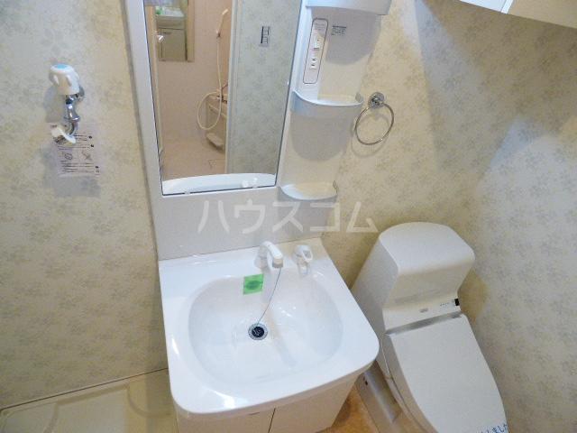 ダイワティアラ津田沼Ⅵ 113号室の洗面所