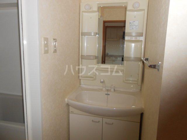 グリーンガーデン東戸塚 202号室の洗面所