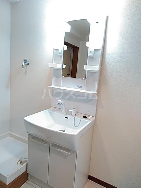 エスペランサ武蔵野 107号室の洗面所