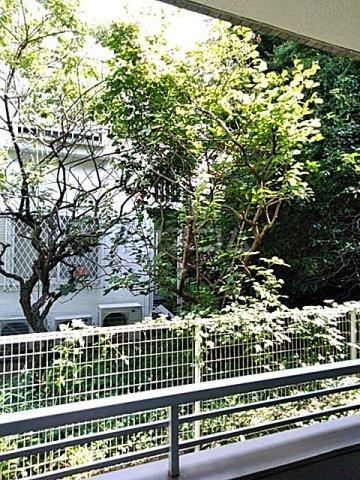 エスペランサ武蔵野 107号室の景色