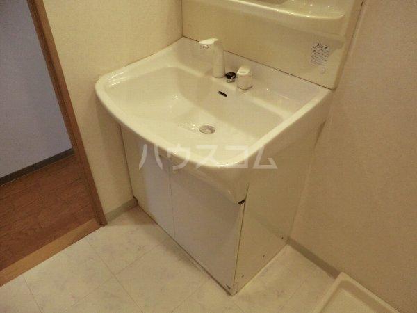 レージュ至来 305号室の洗面所