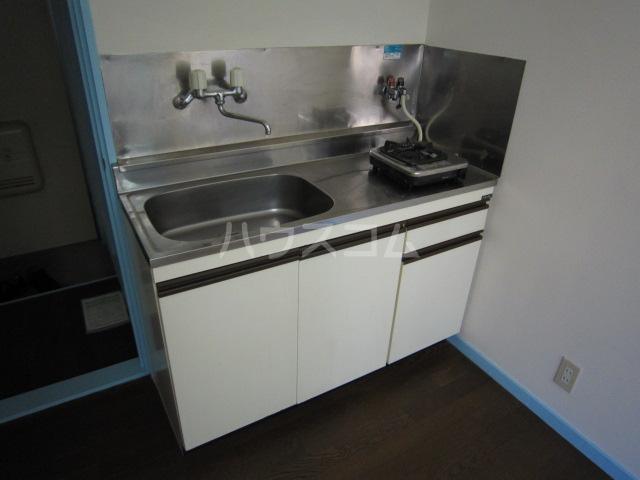 メゾン・ド・パルク Ⅲ 201号室のキッチン