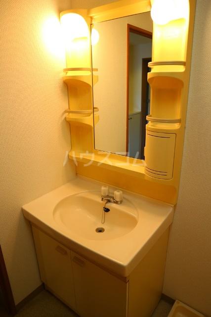 リバーハイツ 206号室の洗面所