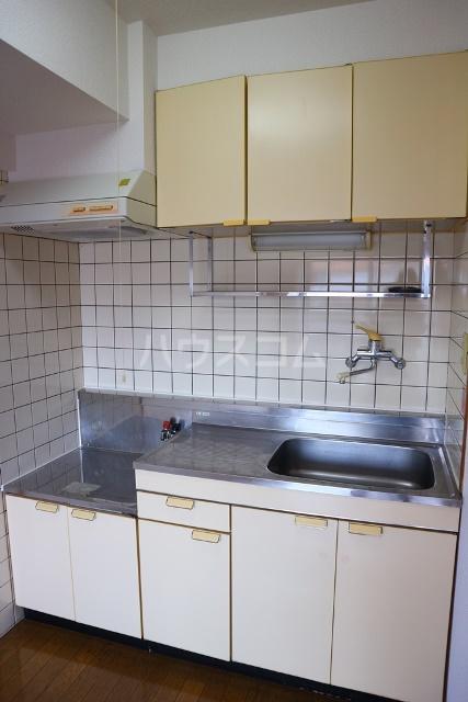 リバーハイツ 206号室のキッチン