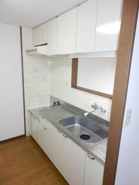 パレスアゼリア 206号室のキッチン