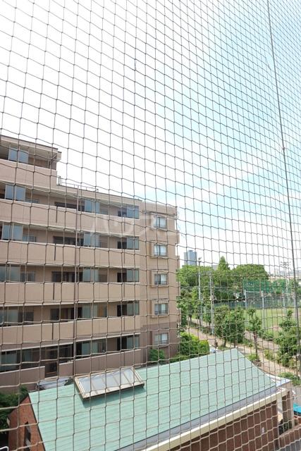 塚越パークハイツ 302号室の景色