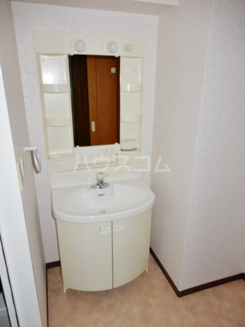 クレスト高円寺 203号室の洗面所