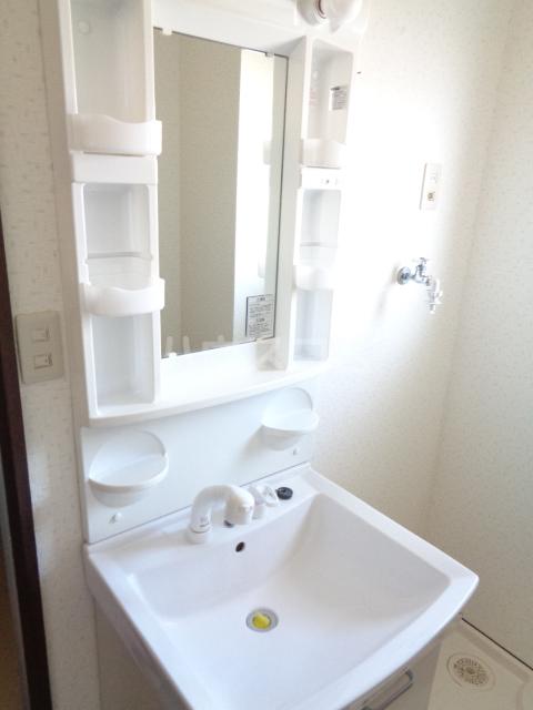 メゾングランテージ 20E号室の洗面所