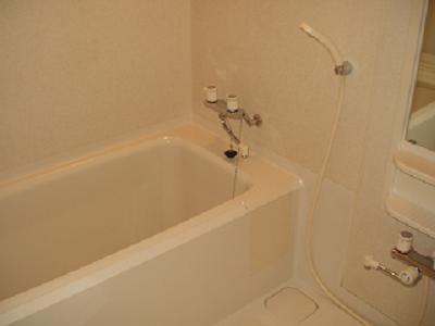 ウッドサイド浦和 503号室の風呂