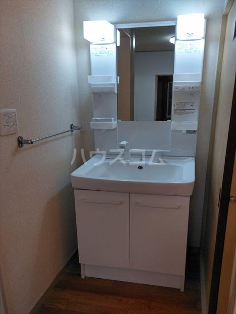 アサマ・ドリームハイツ 202号室の洗面所