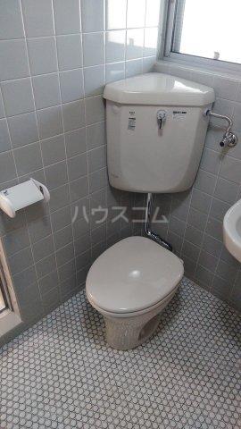ニューグリーンハイツ 302号室のトイレ