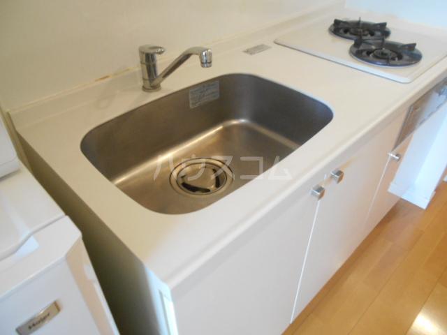 スカイコート新小岩 1005号室のキッチン
