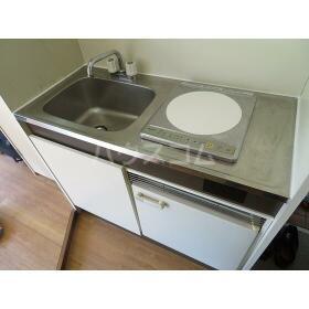 スカイコーポラス 102号室のキッチン