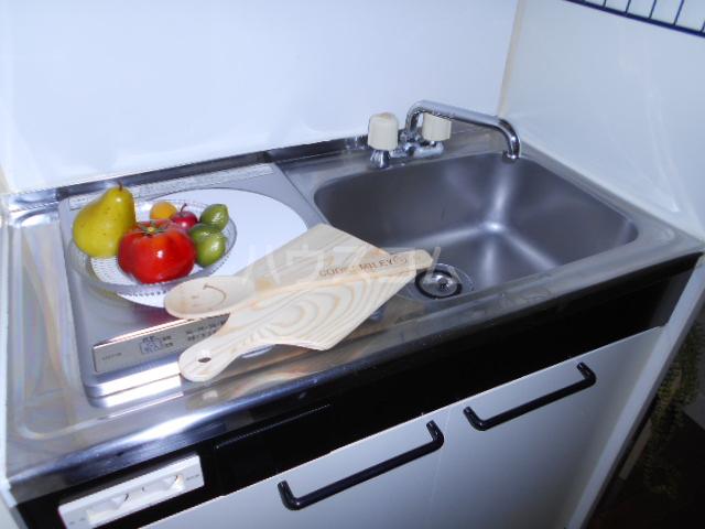 サカイハイツⅤ 109号室のキッチン