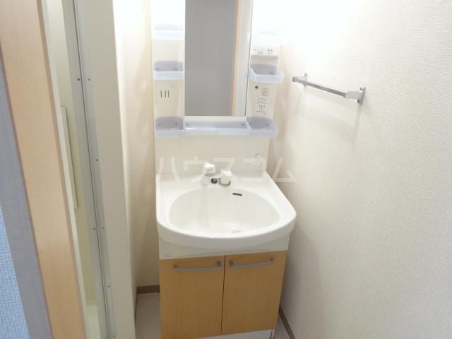 FELICE CITTA 310号室の洗面所