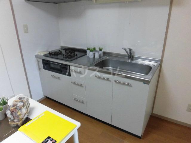 グリーンコーポラス 305号室のキッチン