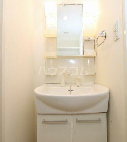 ラ メゾン飛田給 403号室の洗面所