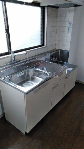 カルム成川 303号室のキッチン